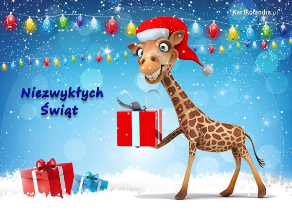 eKartki elektroniczne z tagiem: Żyrafa Niezwykły Mikołaj,