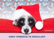 eKartki Boże Narodzenie Ciekawski Mikołaj,