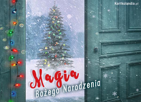 Magia Bo¿ego Narodzenia