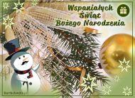 eKartki Boże Narodzenie Wspaniałe święta!,