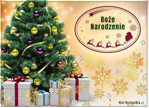 Boże Narodzenie Świąteczna choinka