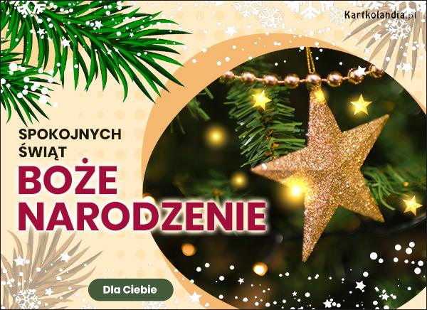 eKartki elektroniczne z tagiem: Bożonarodzeniowe Bombki Wśród gałązek choinki,