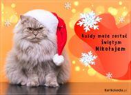 eKartki Boże Narodzenie Kot Mikołaj,