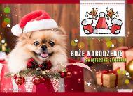 eKartki elektroniczne z tagiem: Mikołaj Milutkie świąteczne życzenia,