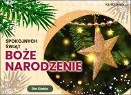 eKartki Boże Narodzenie Wśród gałązek choinki,