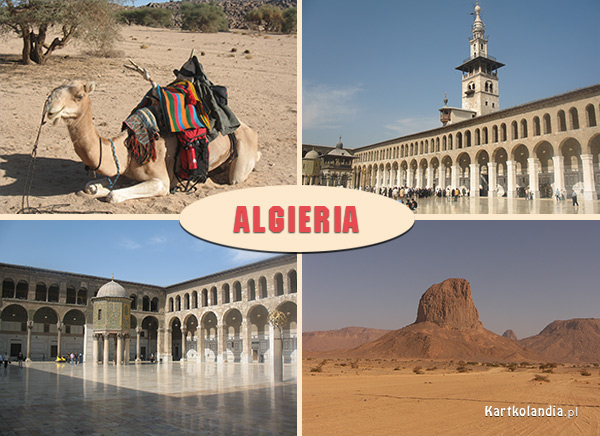 Pozdrowienia z Algierii