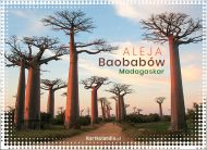 eKartki Państwa, Miasta Madagaskar - Aleja Baobabów,