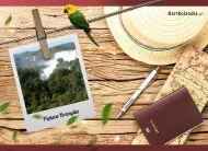eKartki elektroniczne z tagiem: e Kartki z melodią Piękna Brazylia,