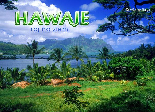 Hawaje to raj