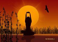eKartki Różności Yoga,