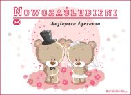 eKartki elektroniczne z tagiem: Kartki na ślub Nowozaślubieni,
