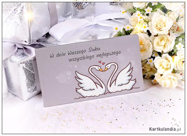 eKartki Ślubne W dniu Waszego Ślubu,