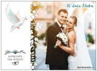 eKartki elektroniczne z tagiem: Para Młodych W dniu Ślubu!,