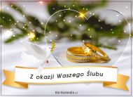 eKartki Ślubne Z okazji Waszego Ślubu,