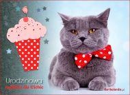 eKartki Urodzinowe Urodzinowa muffinka,