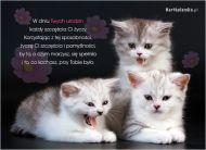eKartki Urodzinowe Urodzinowe kociaki,
