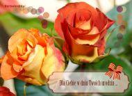 eKartki Urodzinowe Wspaniałe róże dla Ciebie,