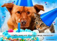 eKartki elektroniczne z tagiem: Darmowe kartki urodzinowe Dziś są Twoje Urodziny,
