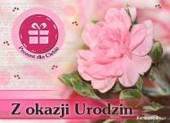 eKartki Urodzinowe Kartka Urodziny,