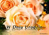 eKartki elektroniczne z tagiem: Darmowe kartki urodzinowe Subtelne urodzinowe róże,