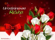 eKartki Urodzinowe Urodzinowe róże,