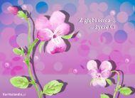 eKartki Urodzinowe Z g³êbi serca,