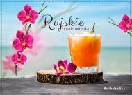 eKartki elektroniczne z tagiem: e-Kartka pozdrowienia Rajskie pozdrowienia!,