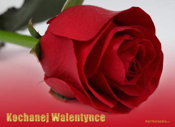 Kochanej Walentynce