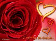 eKartki Miłość - Walentynki Z miłości do Ciebie...,