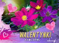eKartki elektroniczne z tagiem: Darmowa e-Kartka na walentynki Kwiatuszki na Walentynki,