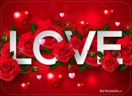 eKartki elektroniczne z tagiem: Kartki walentynkowe Miłość wyrażona kwiatami,