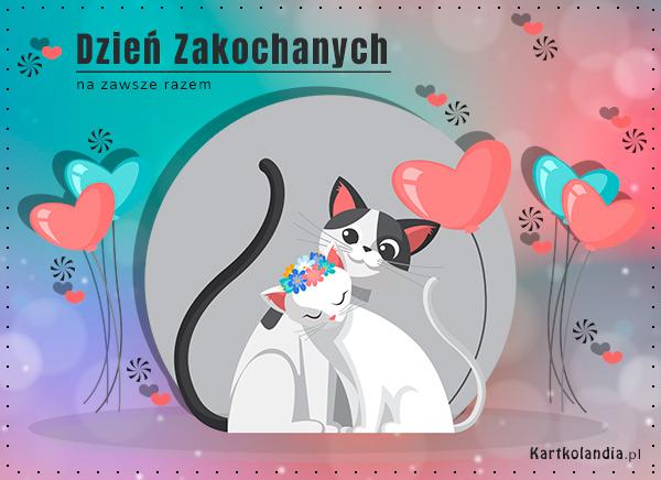 eKartki elektroniczne z tagiem: Kot Na zawsze razem,