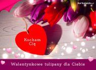 eKartki elektroniczne z tagiem: Walentynki Walentynkowe tulipany,