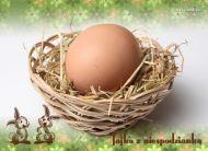 eKartki Wielkanoc Jajko z niespodzianką,