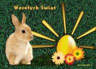 eKartki Wielkanoc E - kartka wielkanocna,
