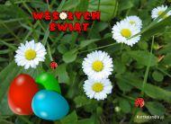 eKartki Wielkanoc Stokrotki wielkanocne,