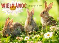 eKartki Wielkanoc Wielkanocne zaj±czki,