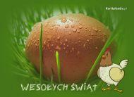 eKartki Wielkanoc Wielkanocny okaz,