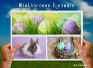 eKartki elektroniczne z tagiem: e-Kartka na Wielkanoc Pocztówka wielkanocna,