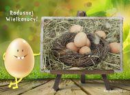 eKartki elektroniczne z tagiem: e-Kartka na Wielkanoc Radosnej Wielkanocy,