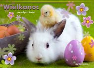 eKartki elektroniczne z tagiem: e-Kartka wielkanocna Z okazji Wielkanocy,