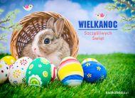 eKartki elektroniczne z tagiem: Kartki Wielkanoc online Szczęśliwych Świąt,