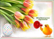 eKartki elektroniczne z tagiem: Kartki Wielkanoc online Wielkanocne wieści,