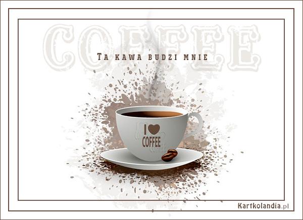 Ta kawa budzi mnie!