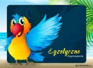 eKartki Zaproszenia Egzotyczne Zaproszenie,