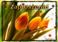 eKartki Zaproszenia Kartka Zaproszenie,