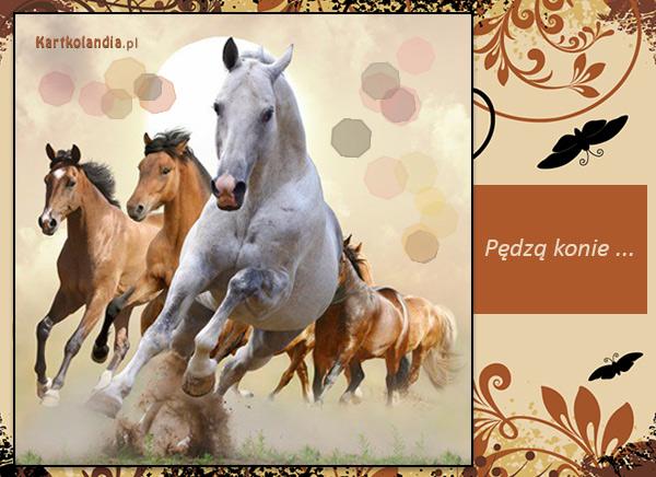 Pędzą konie