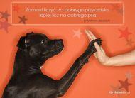 eKartki Zwierzêta Dobry pies,