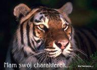 eKartki Zwierzęta Dziki charakterek,