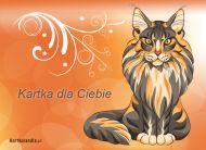 eKartki elektroniczne z tagiem: e-Kartka z kotem Kartka dla Ciebie,